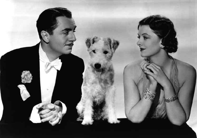 20 Romantic Dog Names